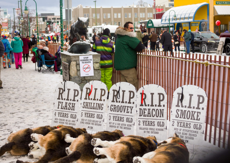 Tombstone-style, PETA protest signs