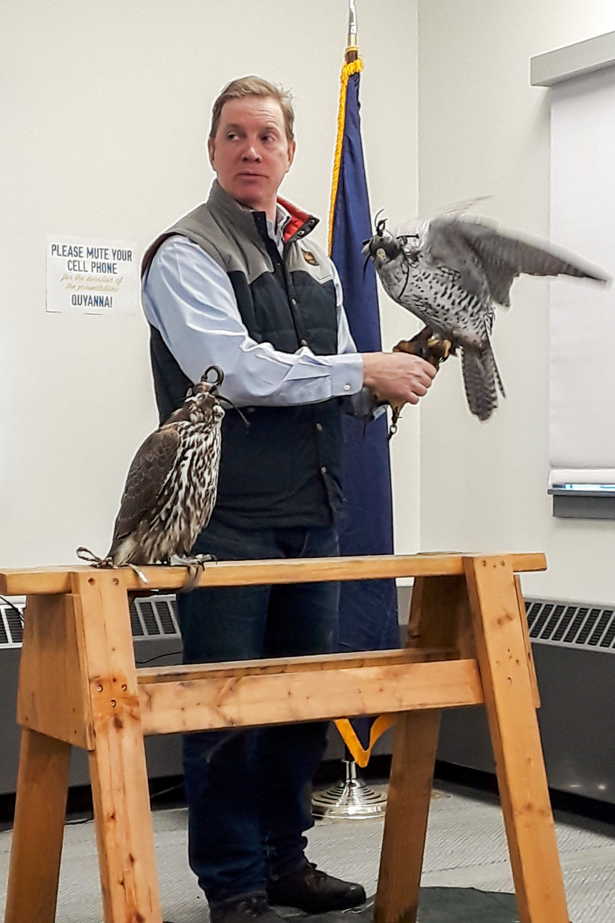 Man gives a presentation on falconry, with one falcon perched on his hand and the other resting nearby.