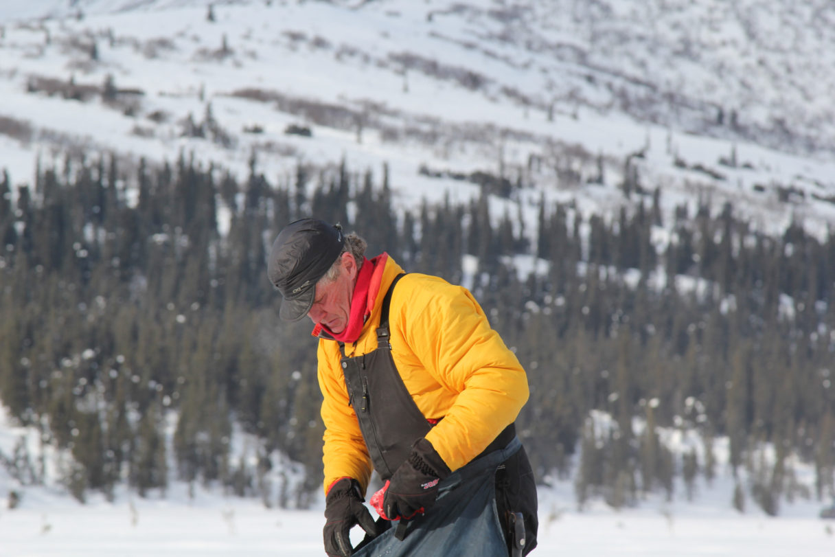 Man in yellow parka and black overalls walks against a snowy, forested background.