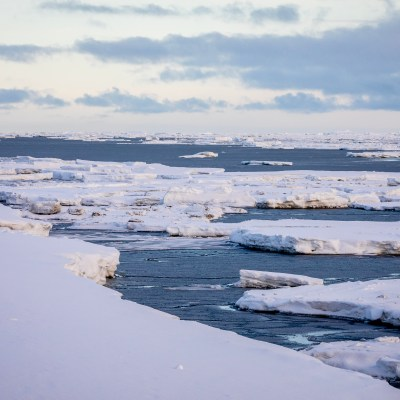 A landscape image of the Bering Sea coast near Nome, showing open water and scattered icebergs.