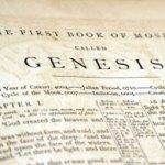 Genesis Overview