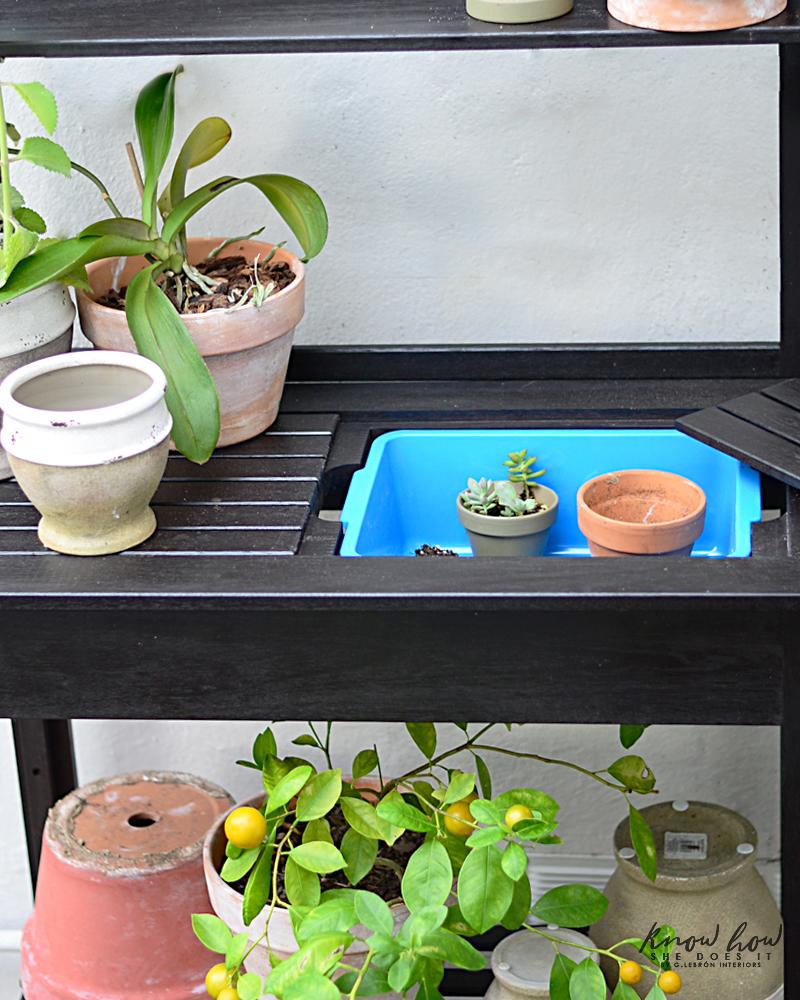 Slow Sundays are plant Days potting table