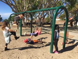 Weekly Newsletter #11: Grateful for our Community (Redwoods Class)