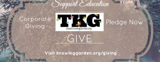 END OF YEAR GIVING: How does the Garden Grow?