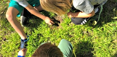 Outdoor Classroom Project: Sour Flower (Grass) Spritzer