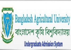 bau admission test result 2013