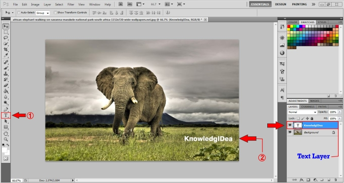 How To Make a Watermark in Photoshop step_2