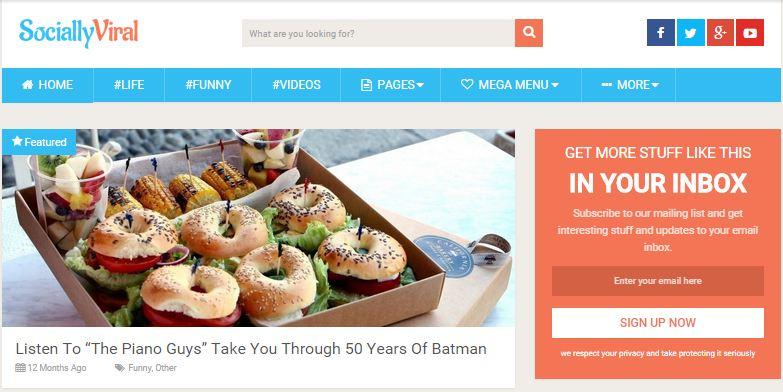 SociallyViral Fastest WordPress Theme For Blogging