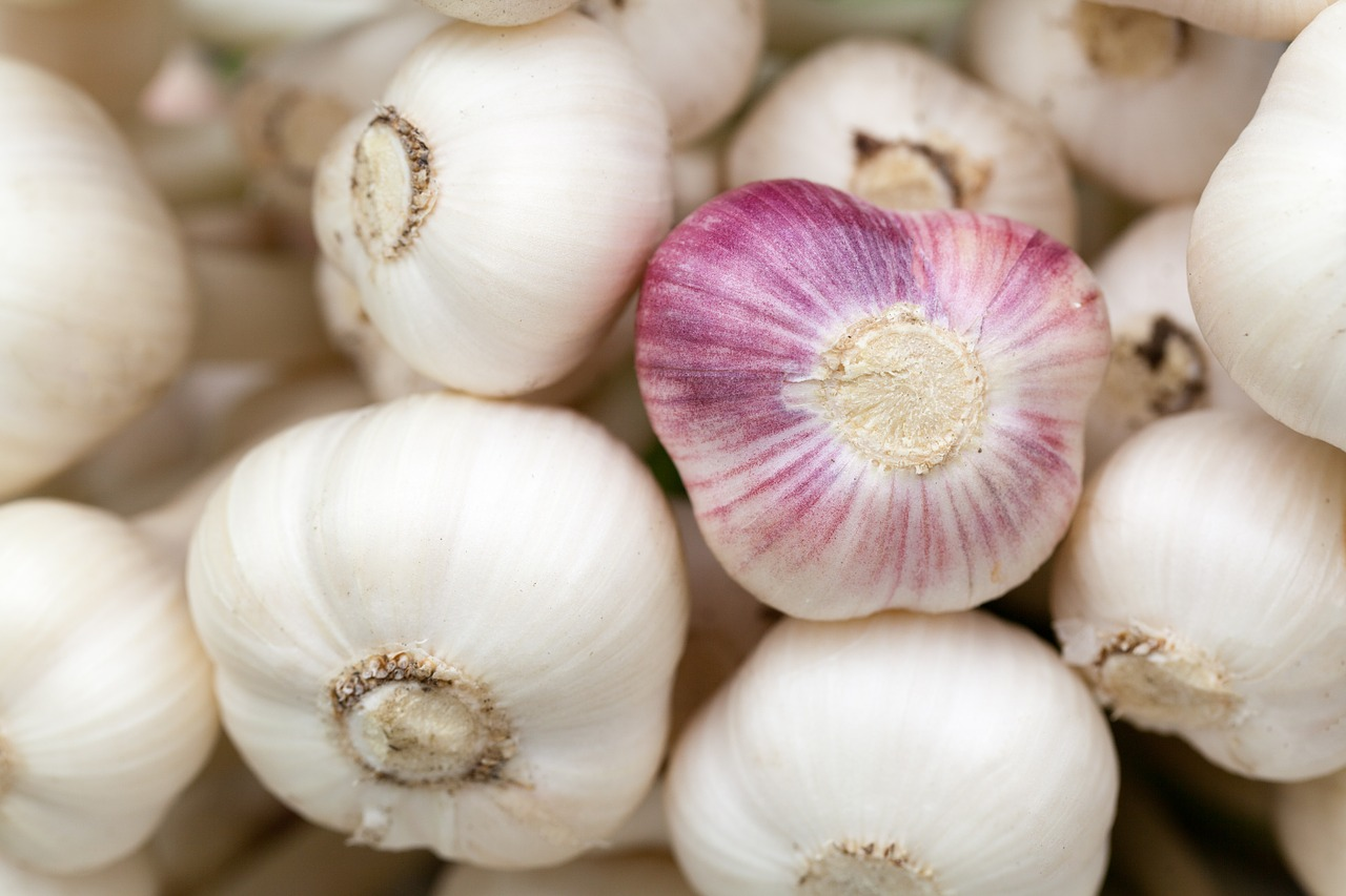 10 amazing health benefits of garlic (lehsun)