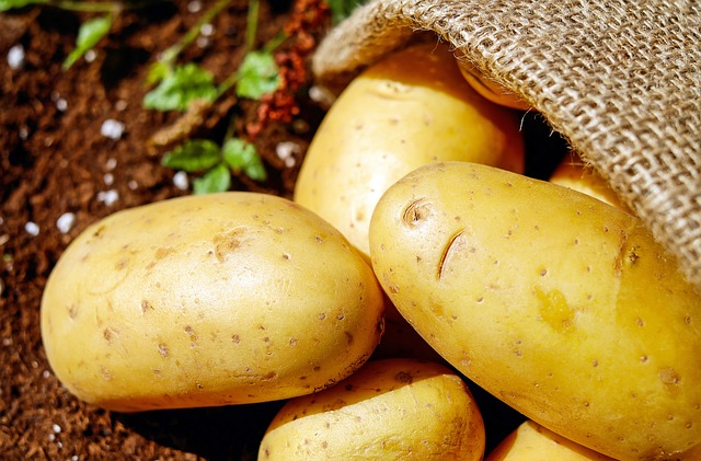 Maintain your muscles with Potato protein