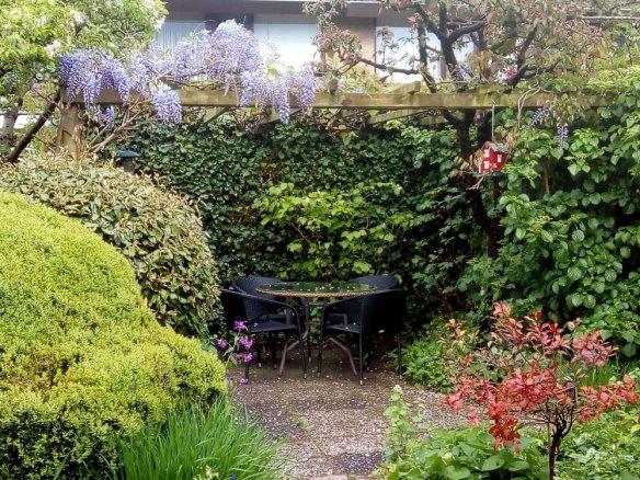 mijn-tuin.jpg