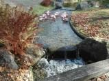 Hasselt-Japanse tuin-006