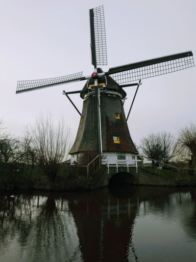 Echt-Hollands
