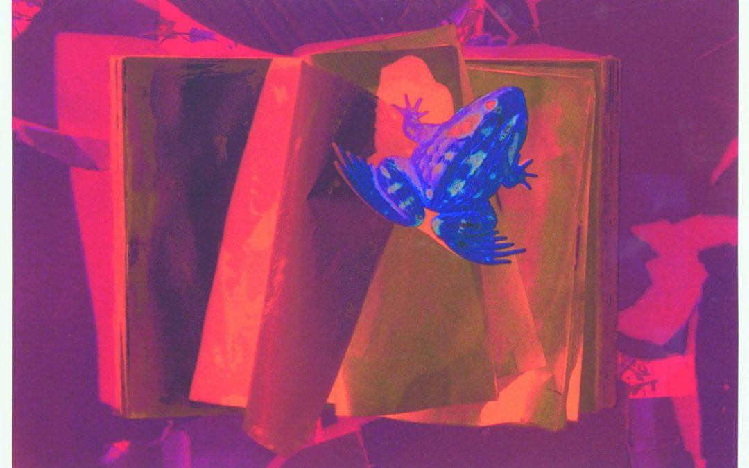 "Alexandra Haeseker RCA  ""Burning Sappho's Books / Glimmer"" #7/15   2003"