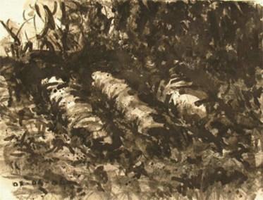 Shroud 3- victim