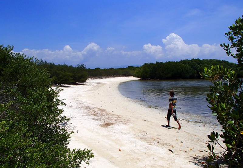 Pulau Panjang, Kawasan Suaka Alam di Selat Alas