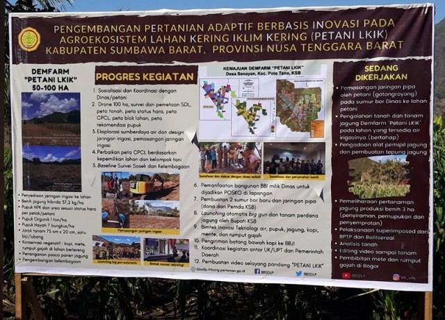Lahan Kering di Sumbawa Barat Ditanami Kopi Robusta dan Rumput Biograss Agrinak 4