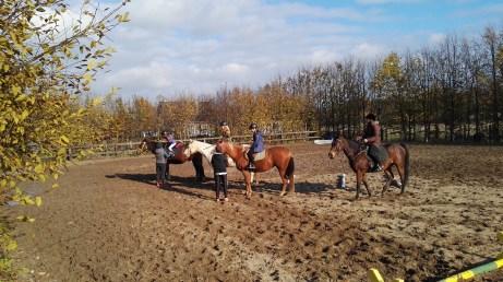 Jak Ranczo to muszą być też konie