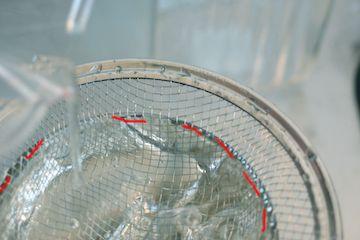 超硬水に浸けて粘ったお水を網に通してみる