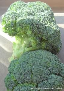 Broccoli Gratin https://www.kochen-und-backen-im-wohnmobil.de