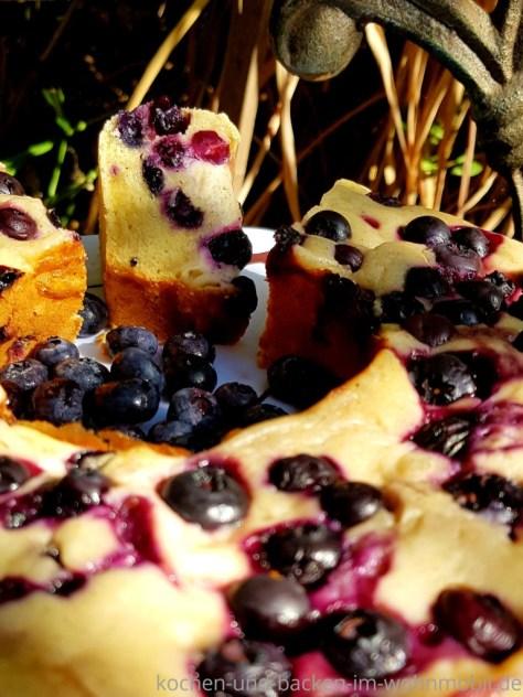 Kuchen backen im Omnia: Blaubeerschmandkuchen