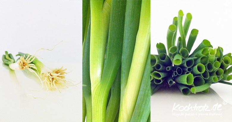 Frühlingszwiebeln Collage