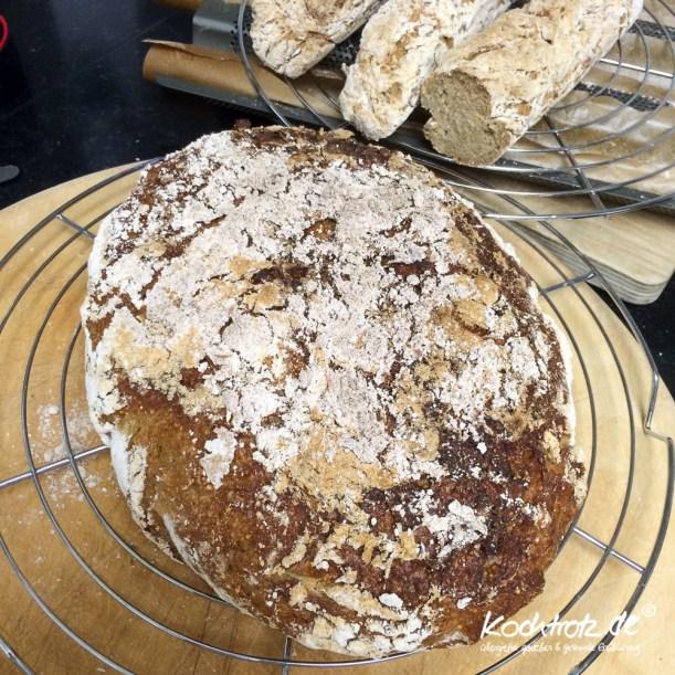 quinoa-sauerteigbrot-glutenfrei-rezept-kochtrotz-1-30