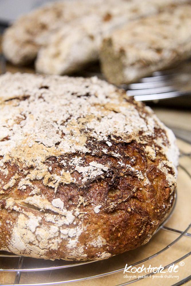 quinoa-sauerteigbrot-glutenfrei-rezept-kochtrotz-1-31