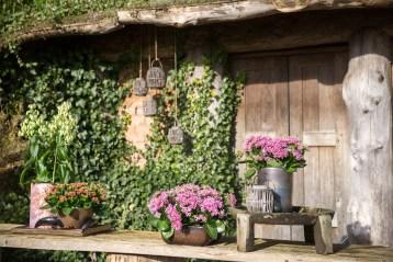 Reisebericht Hollandreise 03-2016 | KochTrotz | Kalanchoë