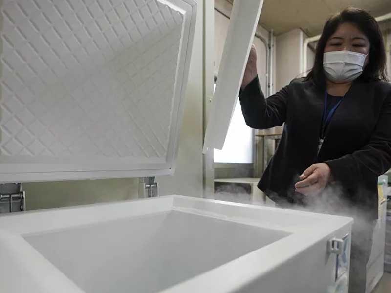 UK Coronavirus Strain Becoming More Prevalent in Japan, Investigation in Kobe City Says