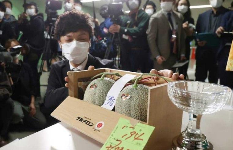 Japan premium melons go for $24,800 after virus slump