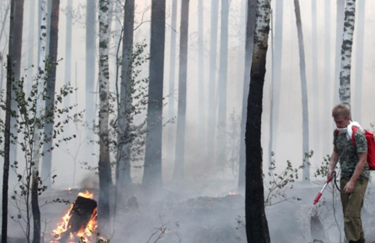Russia burns as climate change scorches forest and steppe