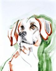 Kunstuitleen Kranenburgh Bergen   Dog A.   Acrylic on paper   70x80 cm