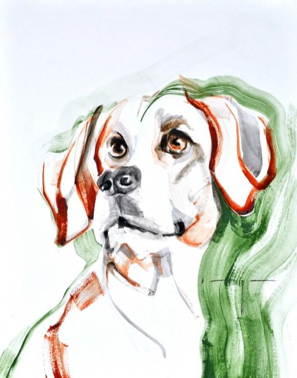Kunstuitleen Kranenburgh Bergen | Dog A. | Acrylic on paper | 70x80 cm