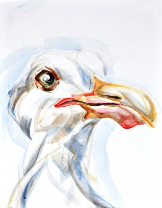 Seagull, portrait | acrylic on canvaspaper | 50x70 cm| Loris,Teguise Lanzarote ES
