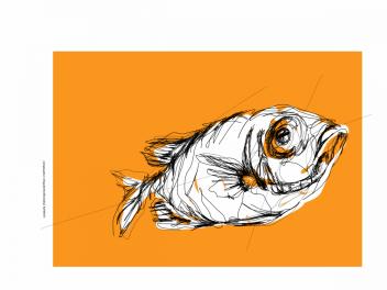 Catalufa   digital drawing