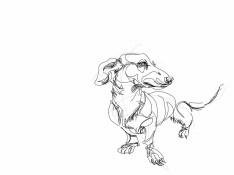 Dachshund, Teckel 2  Digital drawing, print available A4