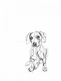 Margot   digital drawing   prints available