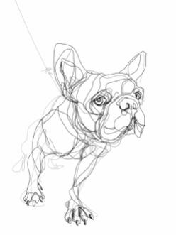 French Bulldog 01 | Digital drawing, print available A4
