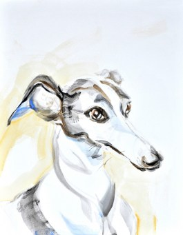 Whippet / Podenco   Acrylic on paper   70x80 cm