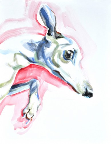 Jumping Dog   Acrylic on paper   70x80 cm