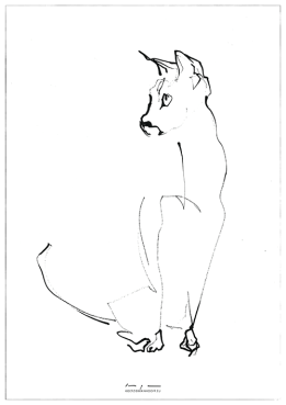 Cat Looking Right | reproduction | print