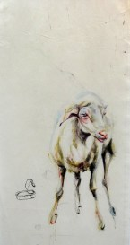 Sheep Oveja   painting on sail