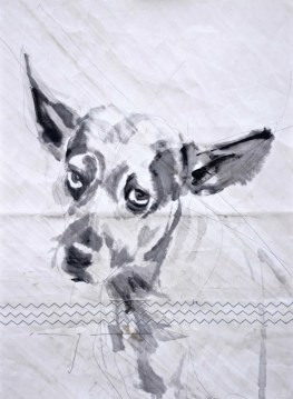Gallery Culture of Yinbao Guangzhou Gallery China   Dog on sail 01 Acrylic on sailcloth   50x70 cm