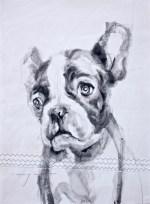 French bulldog puppy  Acrylic on sailcloth   50x70 cm