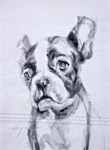 French bulldog puppy |Acrylic on sailcloth | 50x70 cm