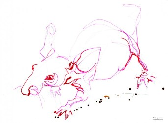 Red Mouse 01  Ink drawing on paper   A3   SOLD