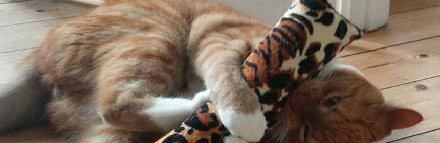 Kattelegetøj - Stoffer og baldrianlegetøj