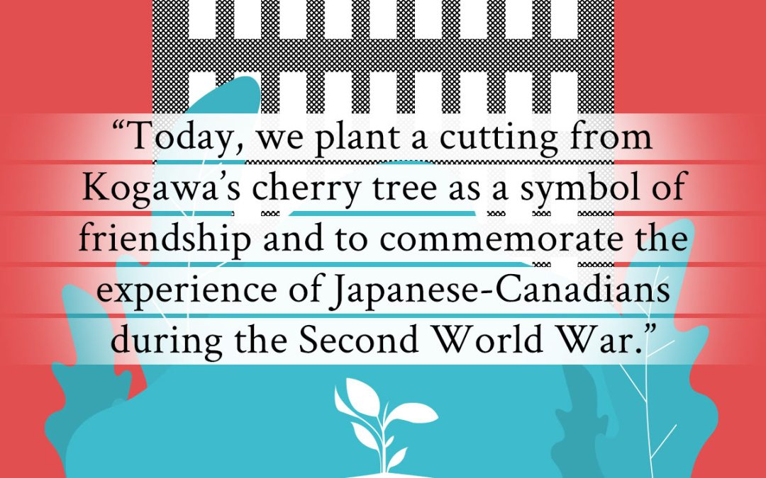 Joy Kogawa Cherry Tree Planting at Vancouver City Hall