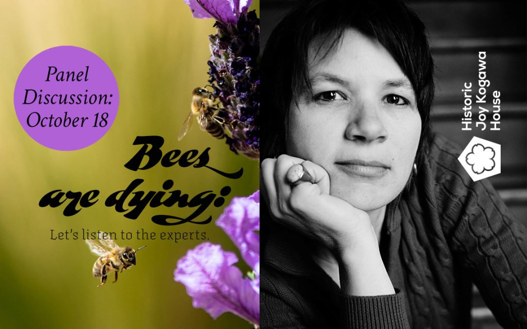 Bees are dying: a panel discussion featuring our writer-in-residence Liz Marshall